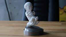 3D-модели эмбрионов печатают в Уфе