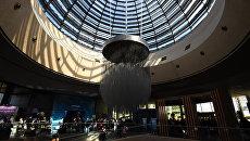 Открытие IV Ялтинского международного экономического форума