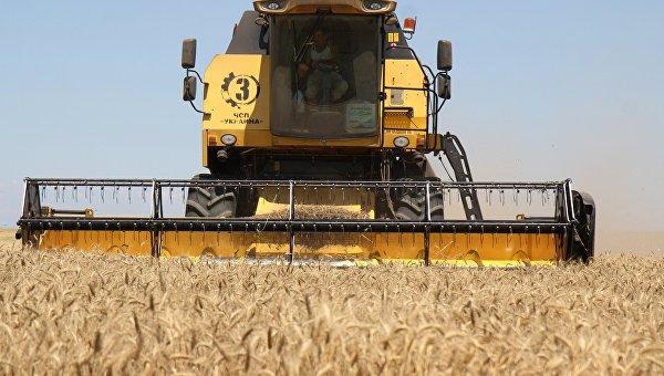 Крым получит млрд руб. наразвитие сельского хозяйства